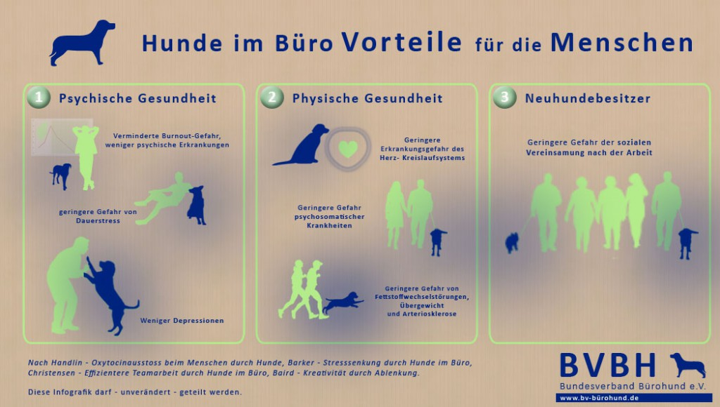 Bürohunde sorgen für die physische und psychische Gesundheit der Mitarbeiter